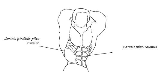 pilvo preso raumenys